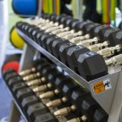 Free Weights, Dumbells, Exercise